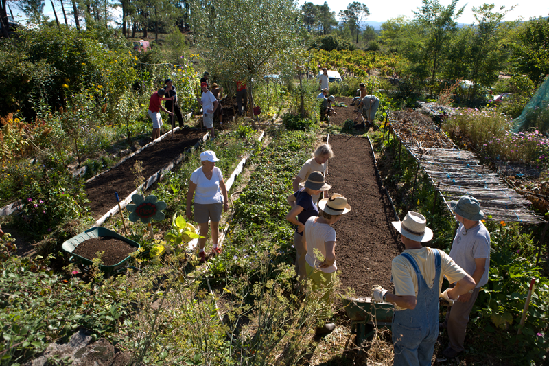 Ferme agro écologique Mas de Beaulieu